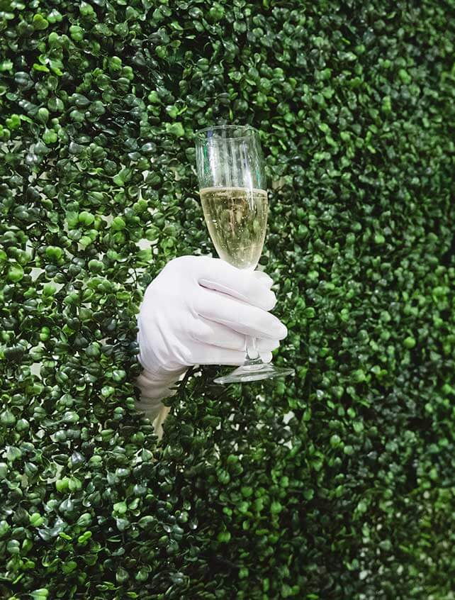 A gloved hand poking through a hedge holds a champagne glass for guests